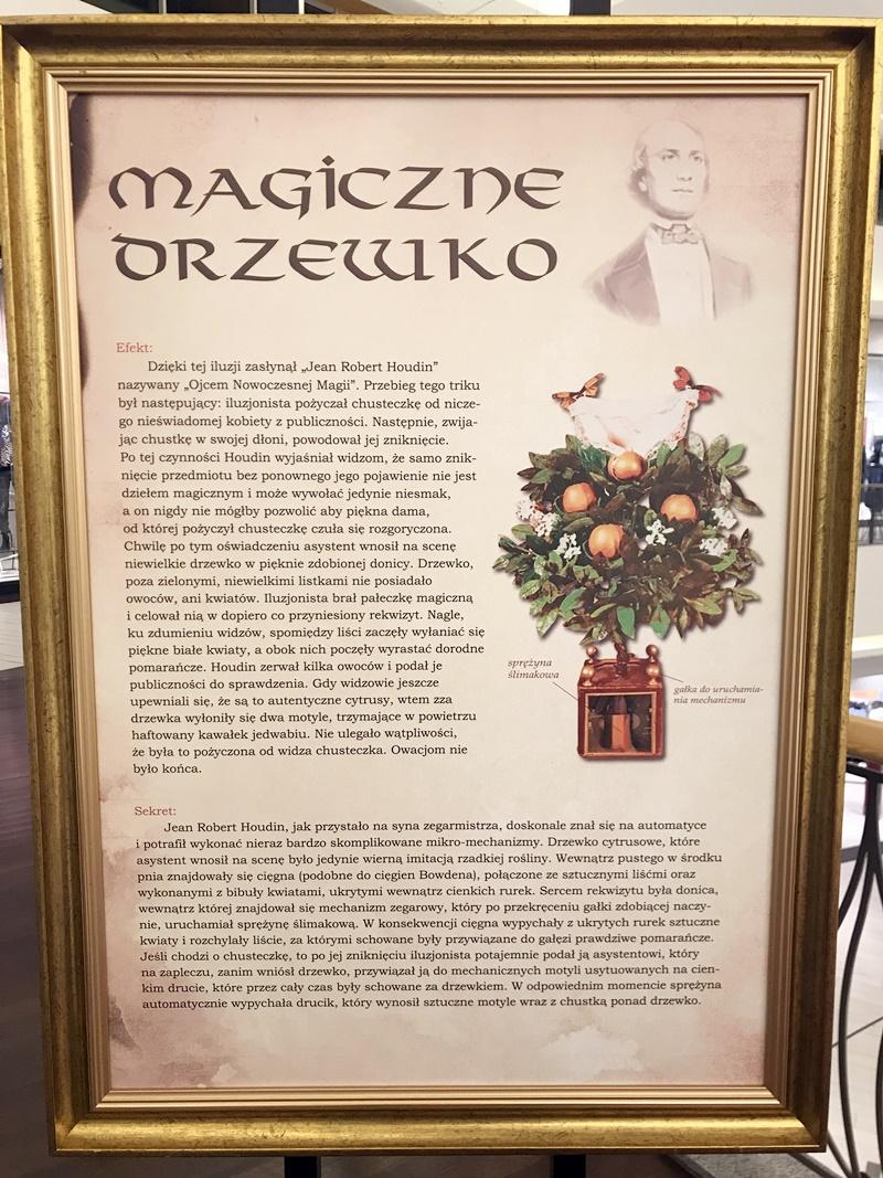Wystawa magii
