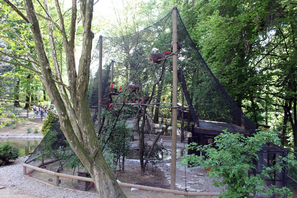 Krakowskie-Zoo